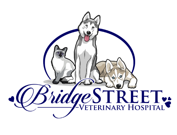 Bridge Street Veterinary Hospital